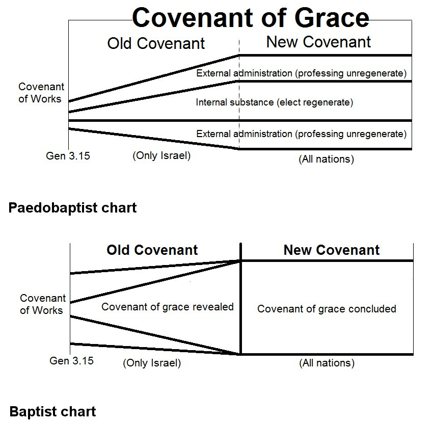 an analysis of covenant theology Contents introduction: christ, the law, and 'pauline theology' part one: studies in paul's christology adam, israel and the messiah χριστοσ as 'messiah.
