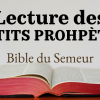 LES PETITS PROPHÈTES (Bible du Semeur)